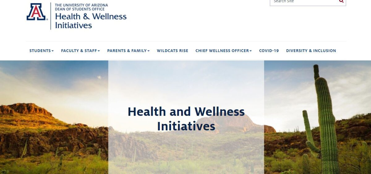 Lessons from The University of Arizona on supporting mental well-being